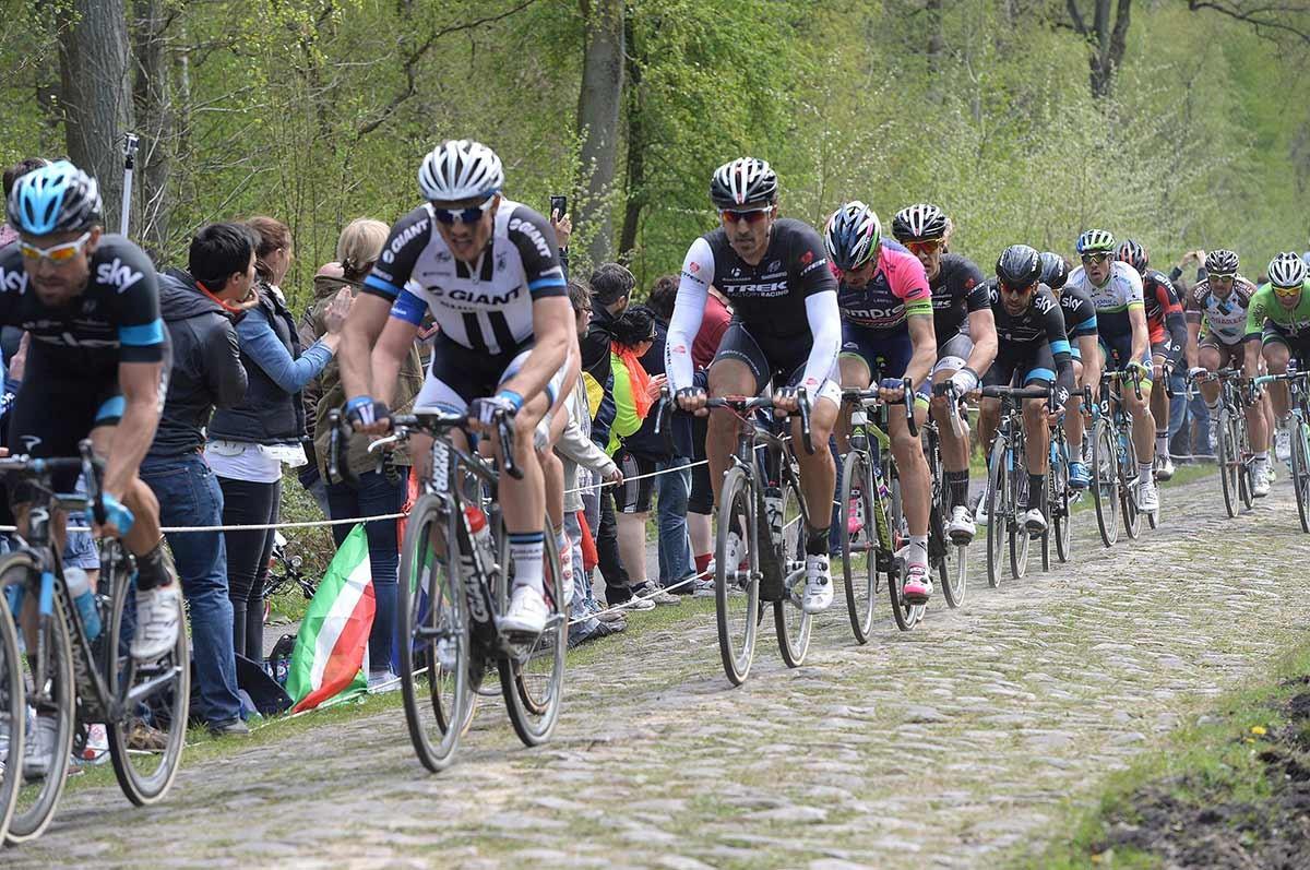 2014, Paris - Roubaix, Trek Factory 2014, Cancellara Fabian, Arenberg